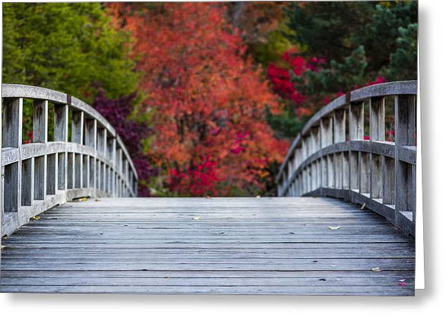 Japanese Landscape Greeting Cards - Cypress Bridge Greeting Card by Sebastian Musial