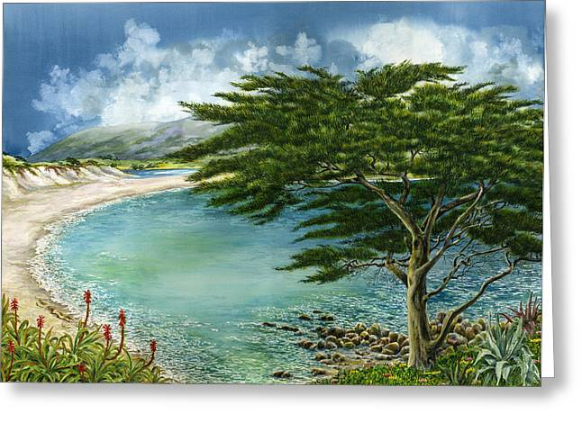 California Beach Greeting Cards - Cypress Greeting Card by Karen Wright