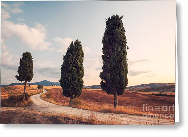 Tuscan Hills Greeting Cards - Cypress lined road in Tuscany Greeting Card by Matteo Colombo