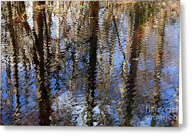 Reflection Of Trees Greeting Cards - Cypress Reflection Nature Abstract Greeting Card by Carol Groenen