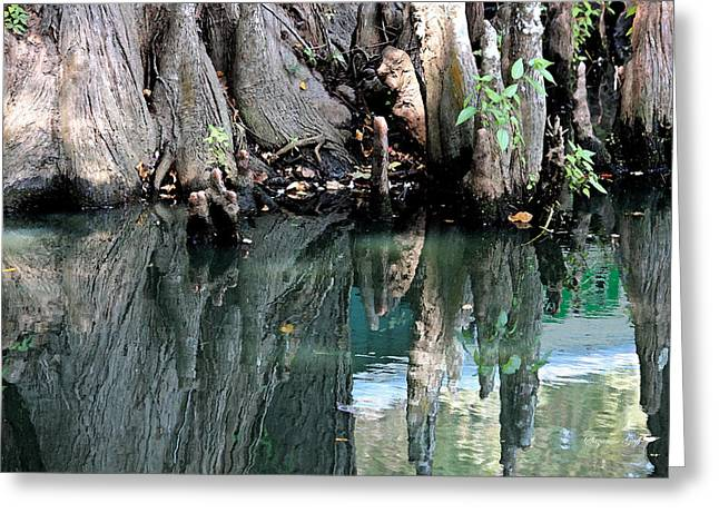 Cypress Tree Digital Art Greeting Cards - Cypress Swamp in Reflection Greeting Card by Suzanne Gaff