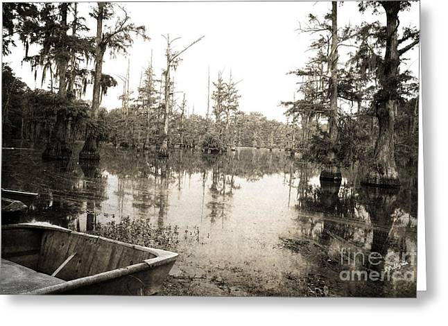 Cypress Swamp Greeting Card by Scott Pellegrin