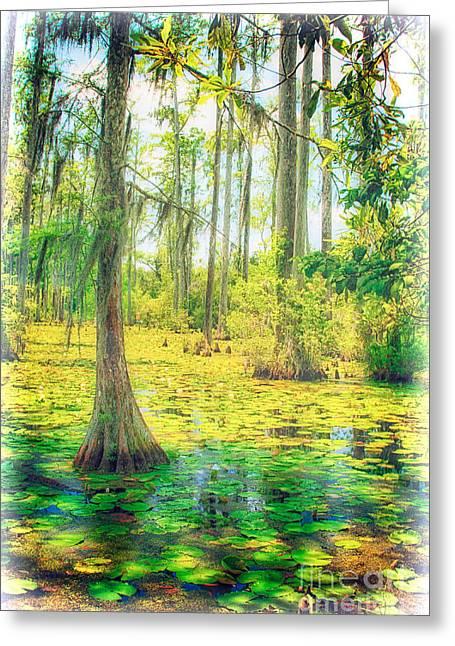 Cypress Tree Digital Art Greeting Cards - Cypress Tree and Water Lilies Greeting Card by Dan Carmichael