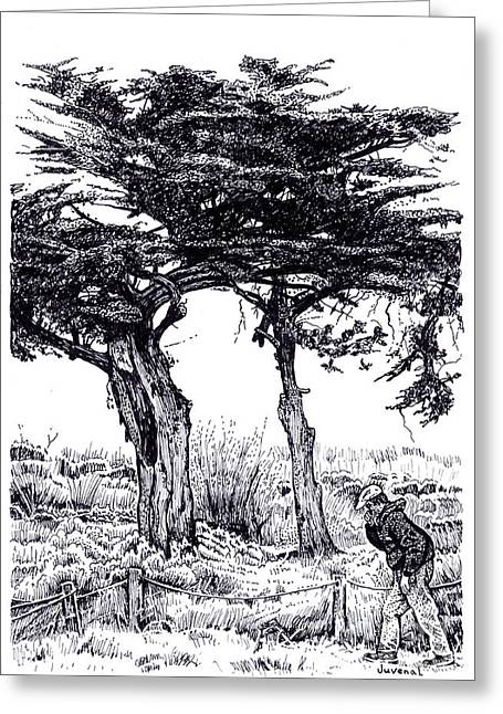 Pointillist Drawings Greeting Cards - Cypress Trees and a Sneeze Greeting Card by Joseph Juvenal