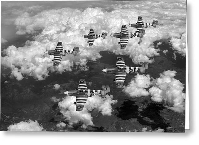 Polish American Digital Greeting Cards - D-Day Mustangs black and white version Greeting Card by Gary Eason