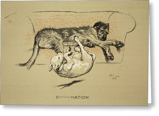 Terrier Dog Drawings Greeting Cards - D--nation, 1930, 1st Edition Greeting Card by Cecil Charles Windsor Aldin