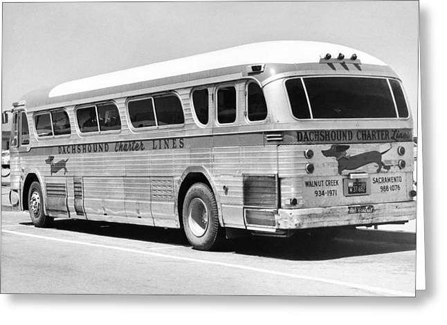 Dachshound Charter Bus Line Greeting Card by Underwood Archives