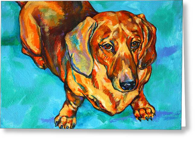 Bloodhounds Greeting Cards - Dachshund Greeting Card by Derrick Higgins