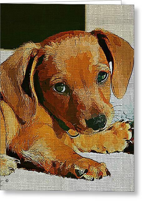 Dachshund Puppy Digital Art Greeting Cards - Dachshund Puppy Greeting Card by Linda Zielinski