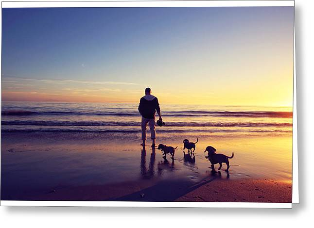 Hounddog Greeting Cards - Dachshund sunset  Greeting Card by Johnny Ortez-Tibbels
