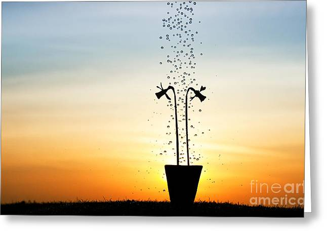 Soaked Greeting Cards - Daffodil Dawn Greeting Card by Tim Gainey