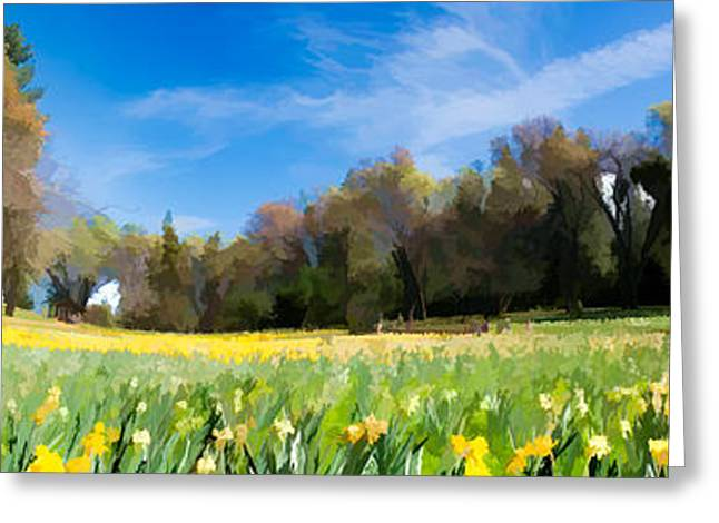 Paint Photograph Greeting Cards - Daffodil Hill Greeting Card by Karen Linsley