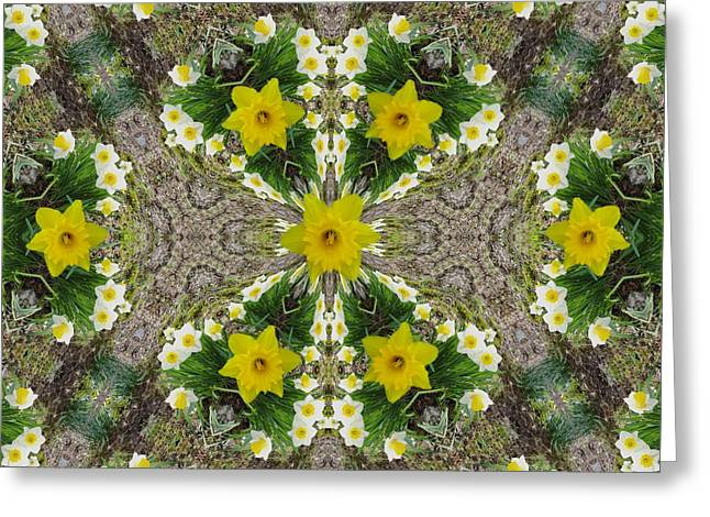 Occasion Mixed Media Greeting Cards - Daffodil Kaleidoscope Greeting Card by Mike Breau