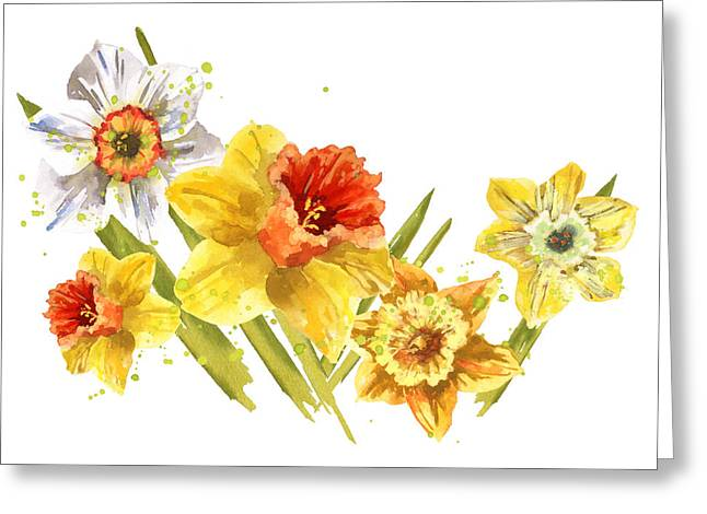 Daffodils Greeting Cards - Daffodil Painting Greeting Card by Alison Fennell