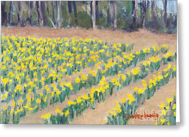 Head Stand Paintings Greeting Cards - Daffodil Rows Greeting Card by Candace Lovely