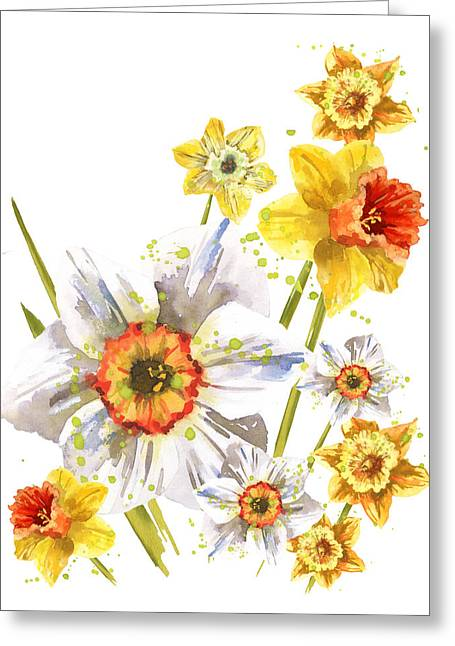 Daffodils Greeting Cards - Daffodil Watercolor Greeting Card by Alison Fennell
