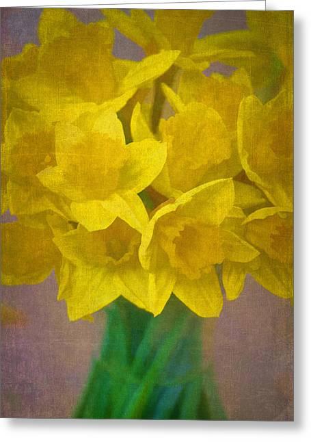 Pamela Cooper Greeting Cards - Daffodils 10 Greeting Card by Pamela Cooper
