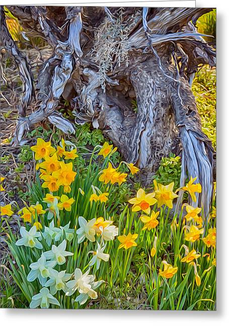 Owfotografik Greeting Cards - Daffodils and Sculpture Greeting Card by Omaste Witkowski