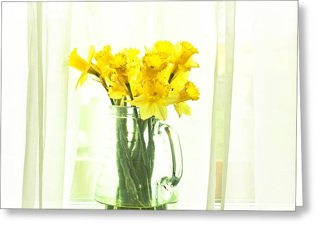 Water Jug Greeting Cards - Daffodils Greeting Card by Tom Gowanlock