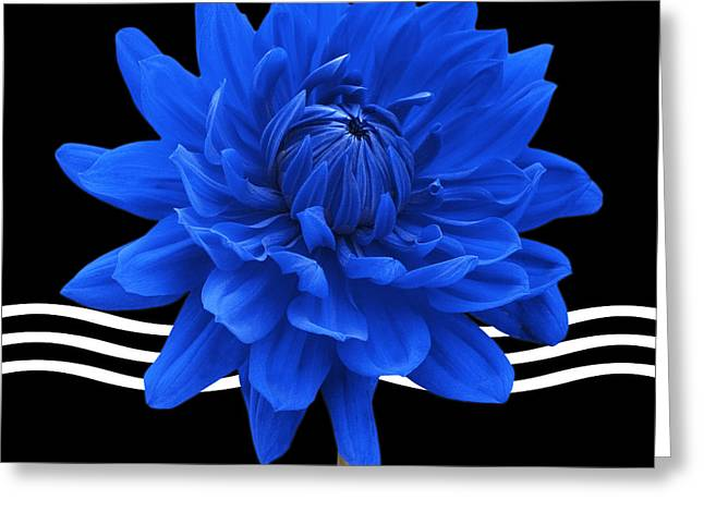 Bathroom Prints Greeting Cards - Dahlia Flower and Wavy Lines Triptych Canvas 2 - Blue Greeting Card by Natalie Kinnear