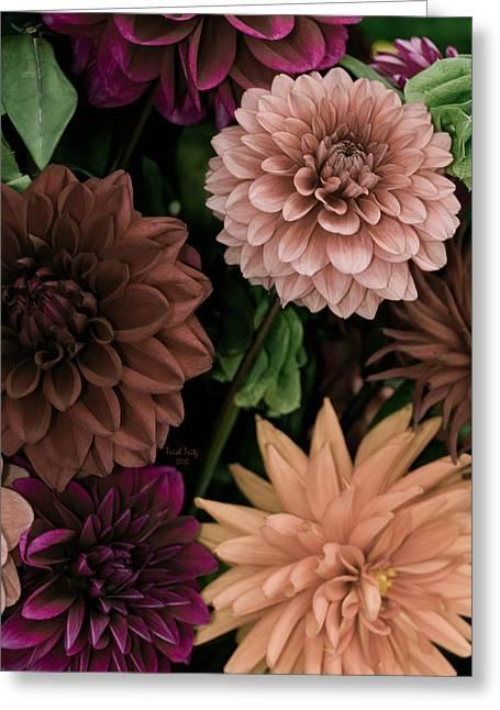 Green Burgandy Greeting Cards - Dahlia Heaven Greeting Card by Trish Tritz