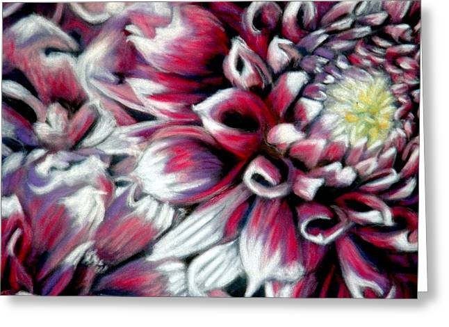 Dahlias in Pastel Greeting Card by Antonia Citrino