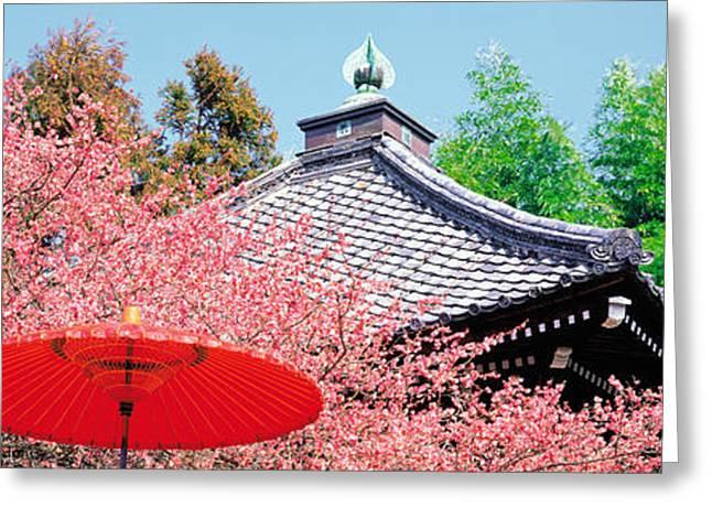 Kyoto Greeting Cards - Daikaku-ji Kyoto Japan Greeting Card by Panoramic Images