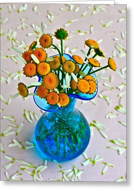 Dainty Daisies Greeting Card by Frozen in Time Fine Art Photography