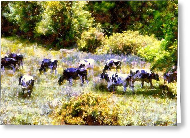 A Hot Summer Day Greeting Cards - Dairy Cows in a Summer pasture Greeting Card by Janine Riley