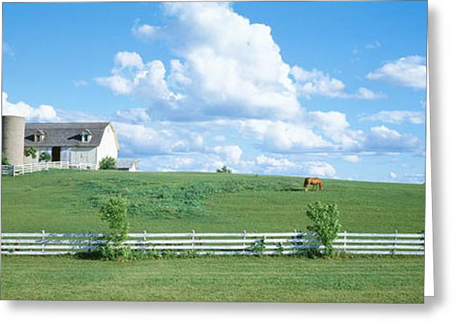 Horse Images Greeting Cards - Dairy Farm Janesville, Wisconsin, Usa Greeting Card by Panoramic Images