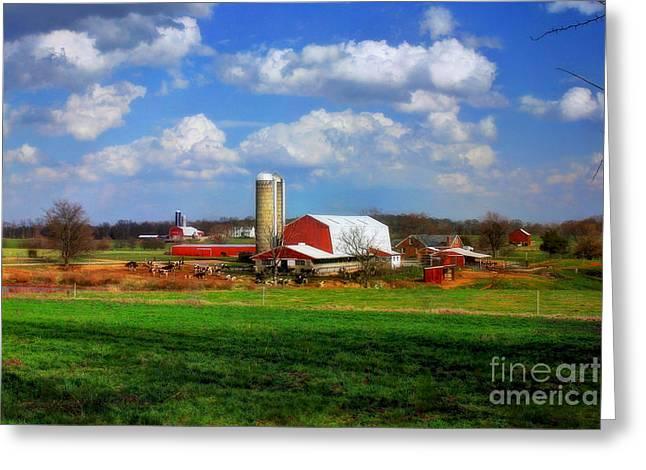 Dairy Land Greeting Card by Reid Callaway