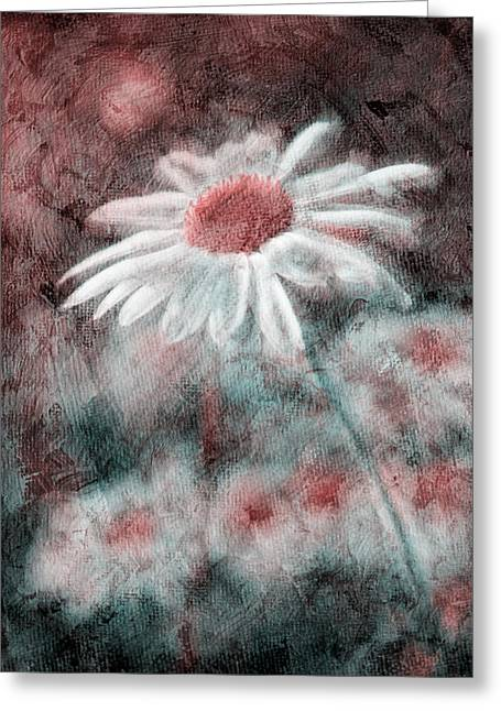 Pink Digital Greeting Cards - Daisies ... again - p11ac2t1 Greeting Card by Variance Collections
