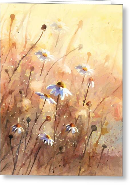 Regalo Greeting Cards - Daisies At Sunset - Impressionism Greeting Card by Georgiana Romanovna