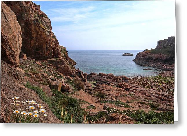 Gills Rock Greeting Cards - Daisies In The Granite Rocks at Corbiere Greeting Card by Gill Billington
