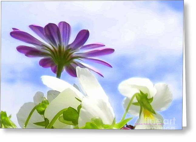 Daisies Looking Up Greeting Card by Angelia Hodges Clay