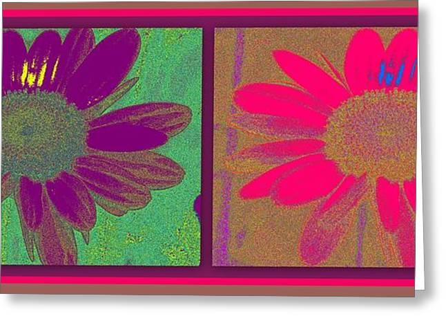 Floral Digital Art Digital Art Greeting Cards - Daisies Purple Pink Greeting Card by Linda Galok