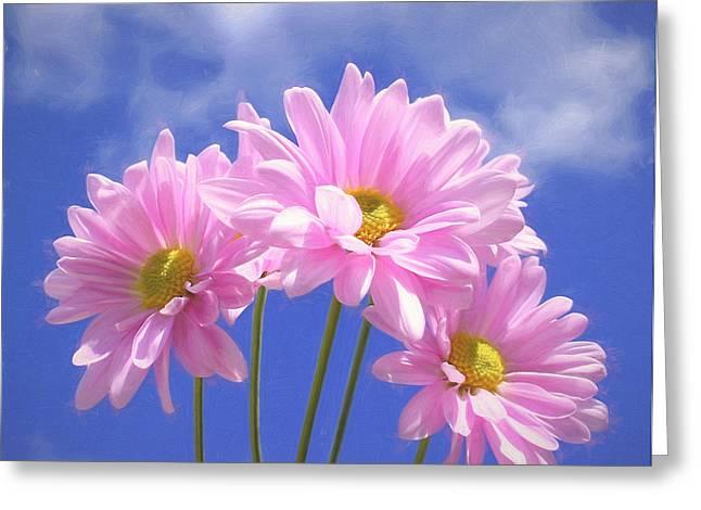 Floral Digital Art Greeting Cards - Daisies Three Greeting Card by Kim Hojnacki