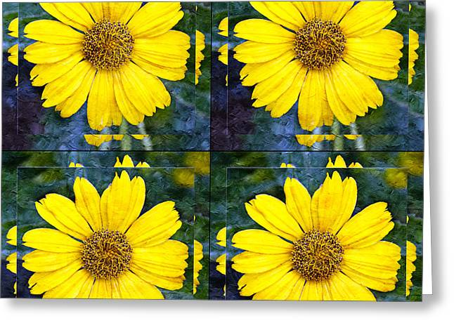 Springy Greeting Cards - Daisy 8 Greeting Card by Andee Design
