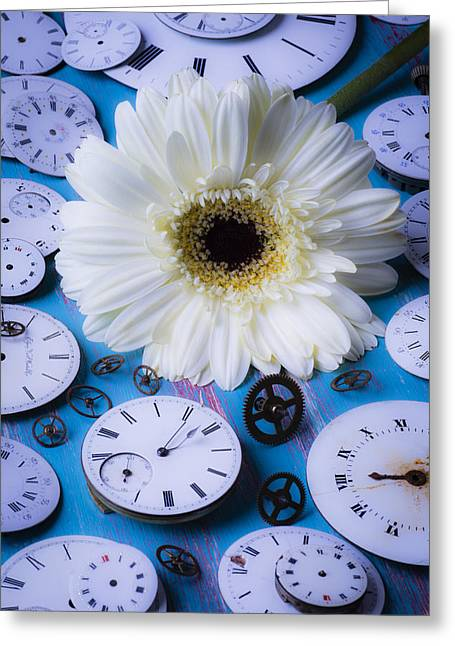 White Daises Greeting Cards - Daisy and watch faces Greeting Card by Garry Gay