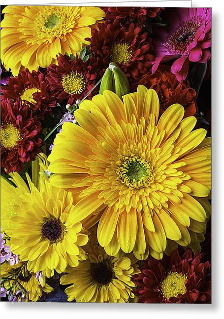 Aster Greeting Cards - Daisy Bouquet Two Greeting Card by Garry Gay