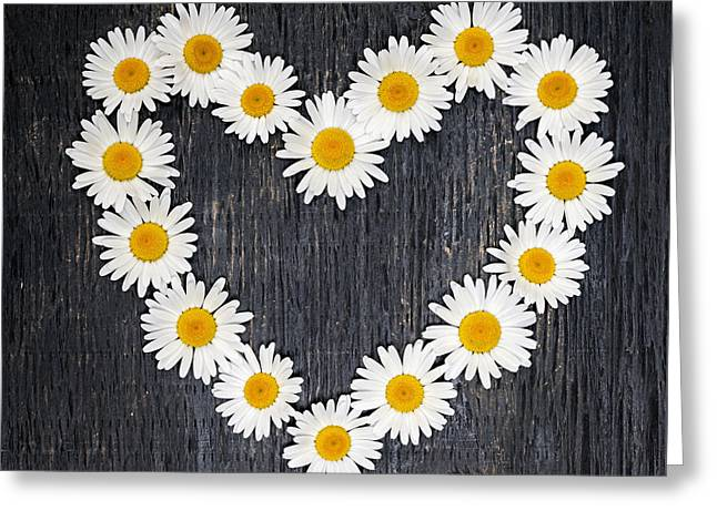 Daisy Greeting Cards - Daisy heart Greeting Card by Elena Elisseeva