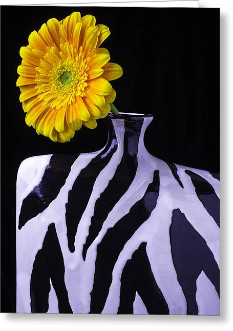 Single Photographs Greeting Cards - Daisy In Cool Vase Greeting Card by Garry Gay