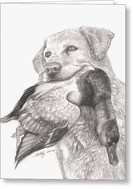 Labs Drawings Greeting Cards - Daisy Greeting Card by Kathleen Kelly Thompson