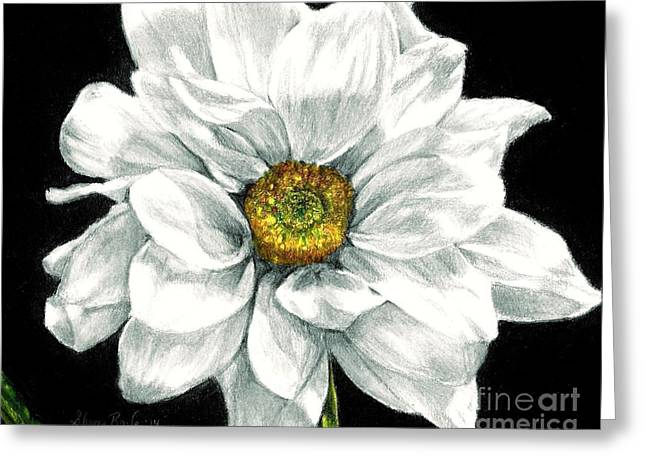 Daylight Drawings Greeting Cards - Daisy Likes to Dance Greeting Card by Shana Rowe