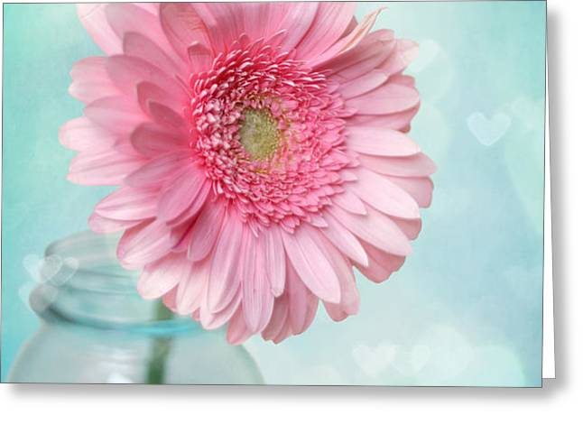 Daisy Love Greeting Card by Amy Tyler