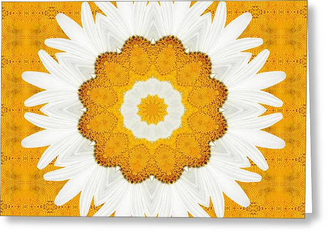 Symmetrics Greeting Cards - Daisy Mandala 01 Greeting Card by Variance Collections