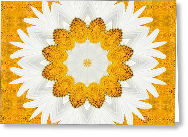 Daisy Greeting Cards - Daisy Mandala 03 Greeting Card by Variance Collections