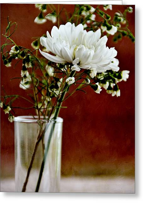 Daisy Mum On Red 3 Greeting Card by Angelina Vick