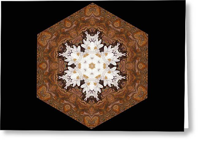 Brown Digital Greeting Cards - Daisy Pattern Mandala - s0125 Greeting Card by Variance Collections
