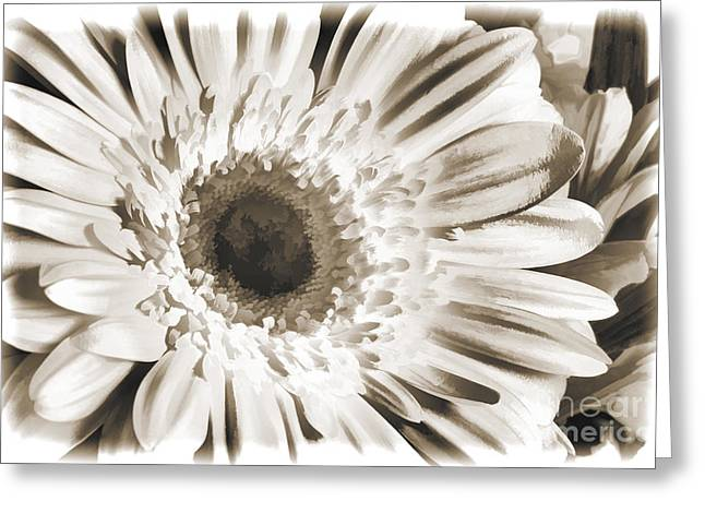 Flower Still Life Prints Greeting Cards - Daisy Spring flower Pastel Painting in Sepia 3177.01 Greeting Card by M K  Miller